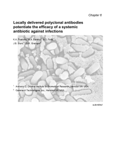Locally delivered polyclonal antibodies potentiate the efficacy