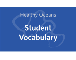 and print student vocabulary handouts