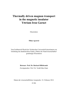 Thermally driven magnon transport in the magnetic insulator Yttrium