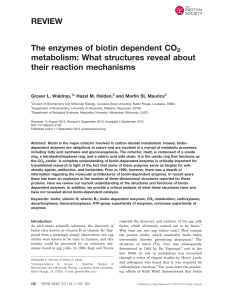 The enzymes of biotin dependent CO2 metabolism: What structures