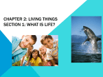 Chapter 2: Living Things Section 1: What is life?