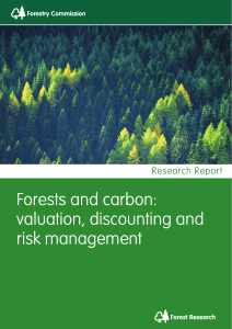 Forests and carbon: valuation, discounting and risk management