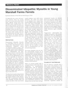 Disseminated ldiopathic Myositis in Young Marshall Farms Ferrets