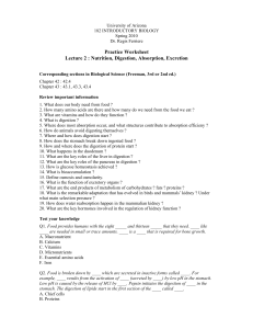 Practice Worksheet Lecture 2 : Nutrition, Digestion, Absorption