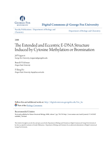 The Extended and Eccentric E-DNA Structure Induced by Cytosine