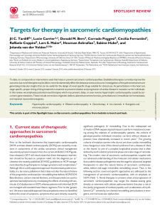 Targets for therapy in sarcomeric cardiomyopathies