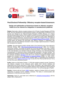 Post-Doctoral Fellowship: Olfactory receptor