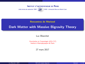 Dark Matter with Massive Bigravity Theory