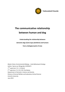 The communicative relationship between human and dog
