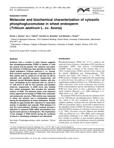 Molecular and biochemical characterization of cytosolic