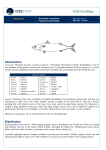 Species factsheet - mackerel