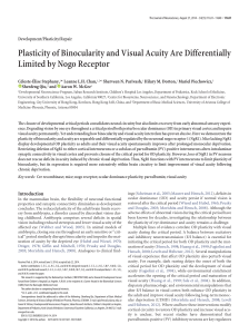 Plasticity of Binocularity and Visual Acuity Are Differentially Limited