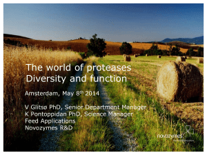 The world of proteases Diversity and function