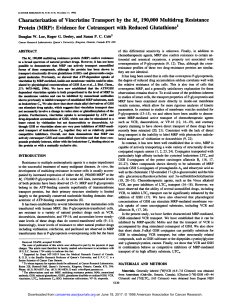 Characterization of Vincristine Transport by the Mr 190,000