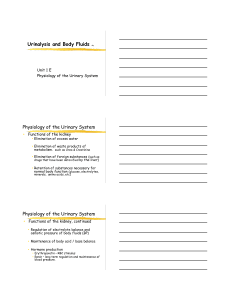 notes page pdf