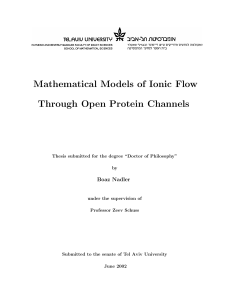 Mathematical Models of Ionic Flow Through Open Protein Channels