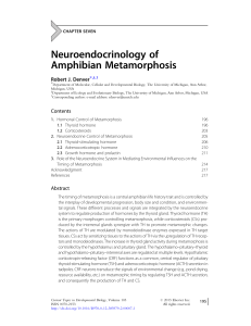 Neuroendocrinology of Amphibian Metamorphosis