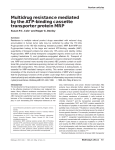 Multidrug resistance mediated by the ATP-binding