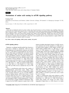 Mechanisms of amino acid sensing in mTOR signaling pathway