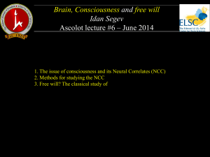 Brain, Consciousness and free will Idan Segev