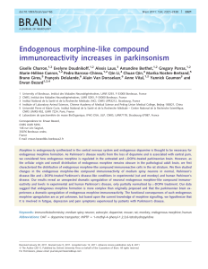 Endogenous morphine-like compound immunoreactivity increases