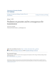 Predation on parasites and its consequences for