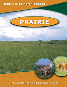 a pdf of the full Prairie unit