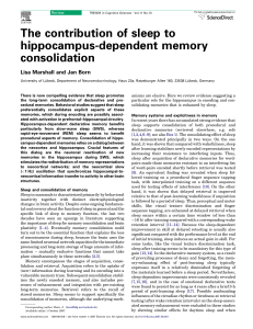 The contribution of sleep to hippocampus
