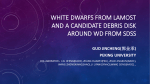 WHITE DWARFS FROM LAMOST AND A CANDIDATE DEBRIS