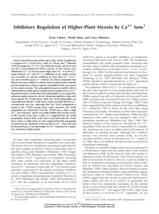 Inhibitory Regulation of Higher-Plant Myosin by