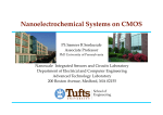Nanoelectrochemical Systems on CMOS