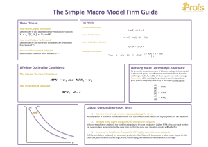 The Simple Macro Model Firm Guide