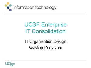 Functional IT Organization