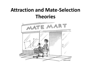 Attraction and Mate Selection Theories