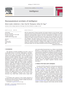 Neuroanatomical correlates of intelligence