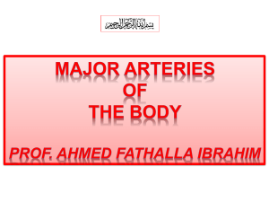 2-Major arteries of the body