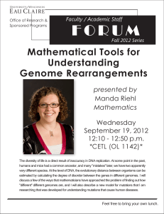 Mathematical Tools for Understanding Genome Rearrangements