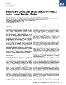 Tracking the Emergence of Conceptual Knowledge during Human