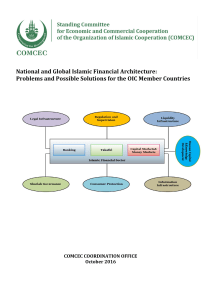 National and Global Islamic Financial Architecture: Problems and