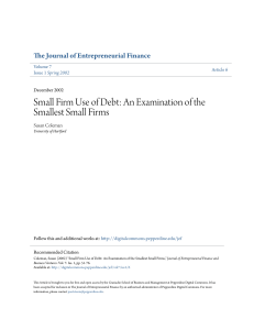 Small Firm Use of Debt: An Examination of the Smallest Small Firms