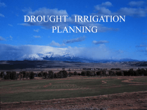 Irrigation Planning for a Drought