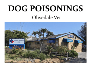 dog poisonings - Douglasdale CPF Sector 1
