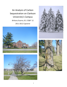 An Analysis of Carbon Sequestration on Clarkson University`s Campus