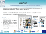 CogWatch One Slide Summary 2012