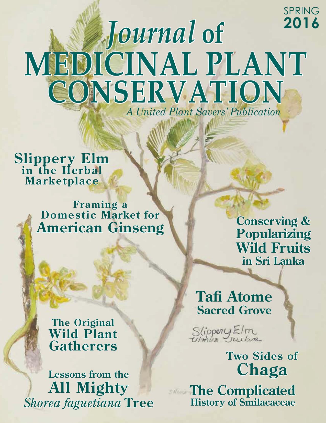 medicinal plant - United Plant Savers