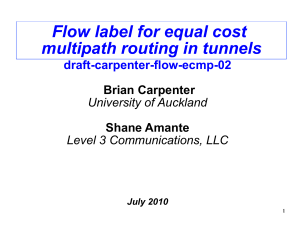 Flow label for equal cost multipath routing in tunnels