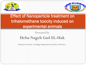 Effect of Nanoparticle treatment on trihalomethane toxicity induced