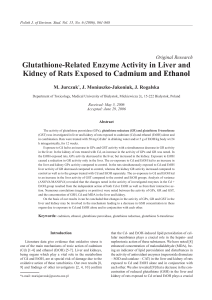 Glutathione-Related Enzyme Activity in Liver and Kidney of Rats