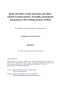 Brain and effort: brain activation and effort-related working