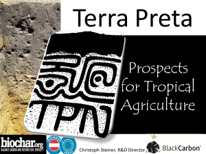 Prospects for Tropical Agriculture